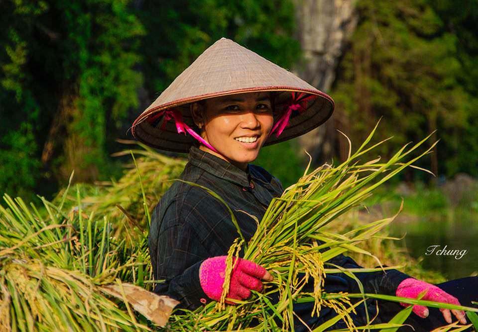 VIETNAM CAMBODIA PROGRAM