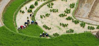 SAPA & BAC HA MARKET 4 DAYS 4 NIGHTS